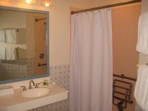 Handicap Accessible Shower in Studio (or lock-off)