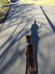 On a run/walk/run with Ty