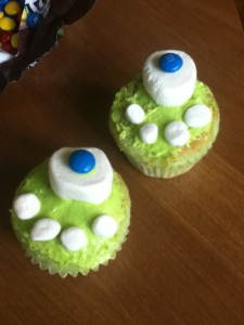 The cupcakes my daughter made - what an outstanding job she did