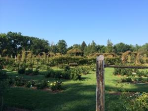 Elizabeth Park's gardens
